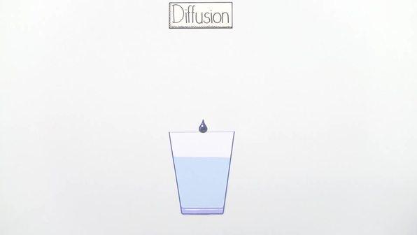 Diffusion und Osmose (Basiswissen)
