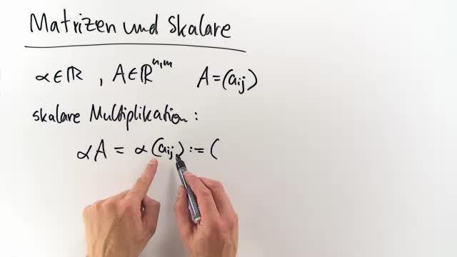 Matritzen und Skalare – Einfach erklärt (inkl. Übungen)