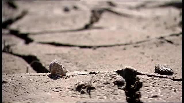 Durstiges Land - Namibia