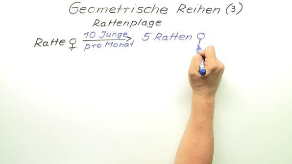 Geometrische Reihen – Rattenplage