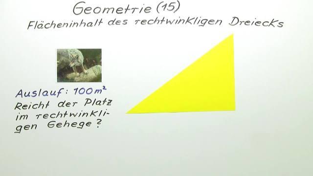 Flächeninhalt des rechtwinkligen Dreiecks – Mathematik online lernen