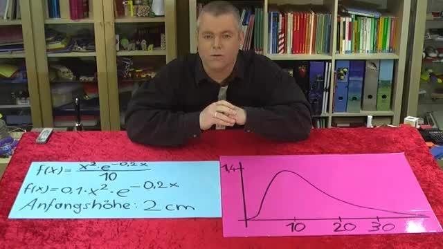 Exponentielle Wachstumsfunktionen – Extrema, Wendepunkte, Nullstellen